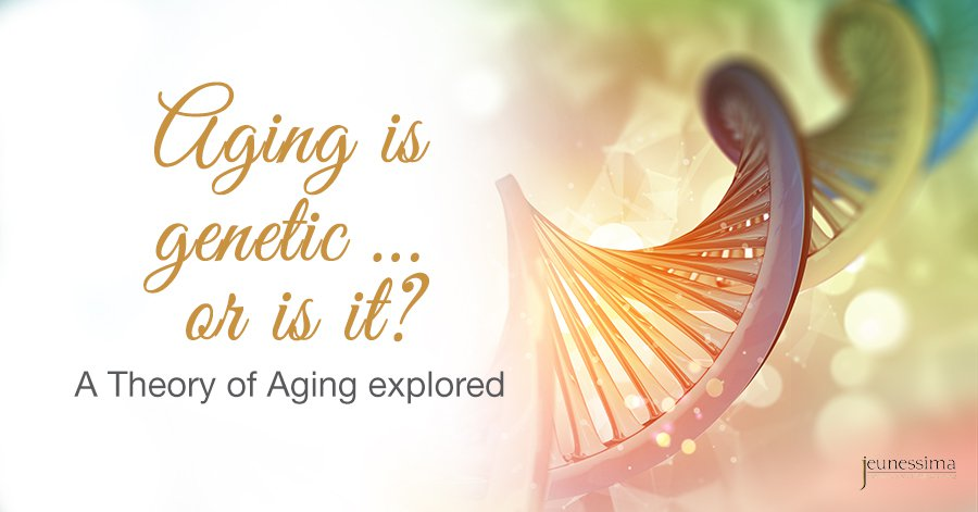 Aging is genetic … or is it? A Theory of Aging explored